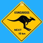 Suction Roadsign Kangaroo