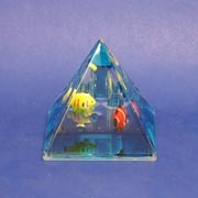 Paperweight Pyramid Fish