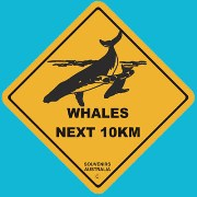 ROADSIGN W/SUCTION WHALES